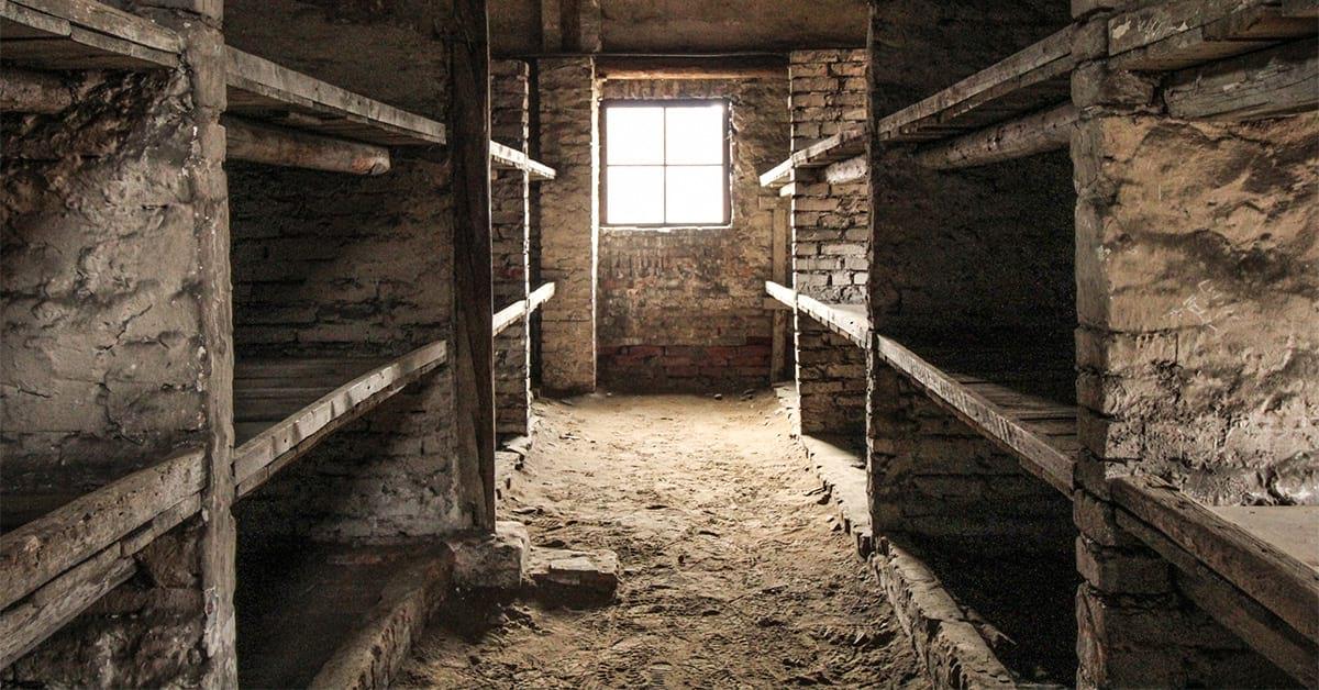 Museo dedicado a quienes ayudaron a presos de Auschwitz - Fundación Violeta Friedman
